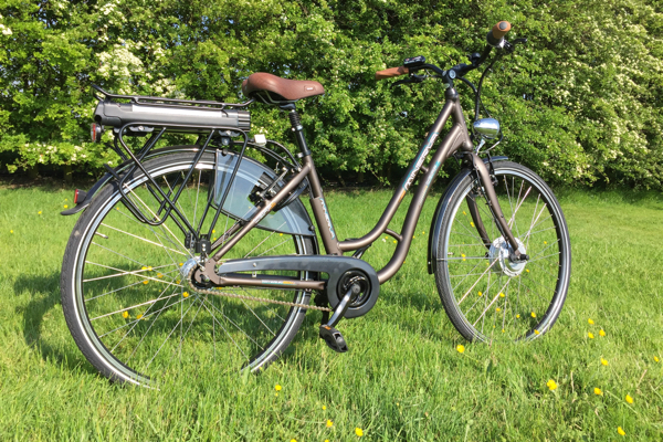 L-W 120 (Minerva branded) European Built Electric bike