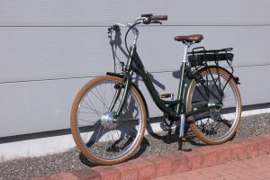 Omega electric bike
